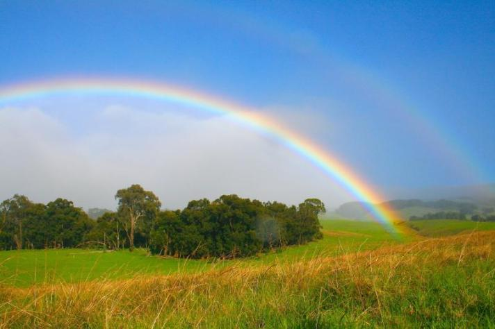 God_s Rainbow
